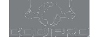 Codi-Pro Logo Grey